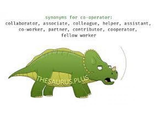 Co Operator Helper Required