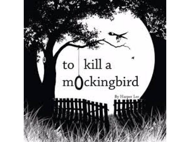 Book Named To kill a mockingbird For Sale and Free Delivery Is Available Islamabad