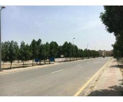 6 marla plot Johar town for rent near pizza hut