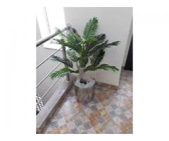 Artificial plants and grass for sale call us