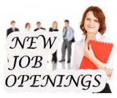 Staff Male and Female  Required For Different Department In Lahore Pakistan