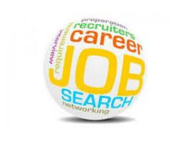 Female Staff Required for Office Work In Islamabad