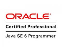 Oracle programer Required Urgently Handsome Salary Karachi