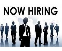 Marketing Staff Required Required For Our company  Peshawar