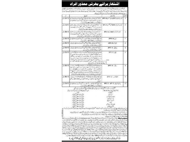 Elementary & Secondary Education Department Jobs 2019 Apply