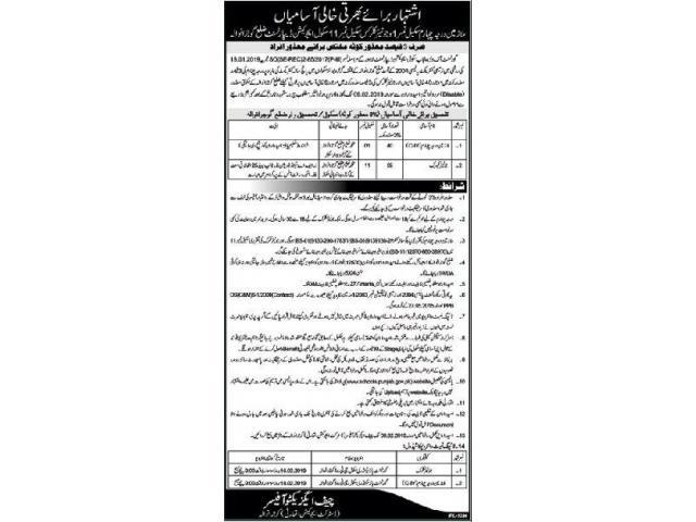 Punjab School Education Department Jobs 2019 Apply Now Gujranwala