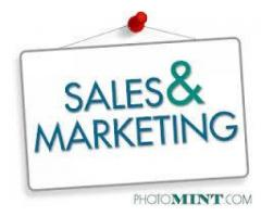 Sales And Marketing Staff Needed For Company In Peshawar