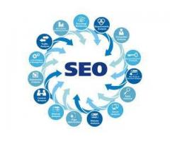 SEO Expert Staff Required For Our Website In Lahore