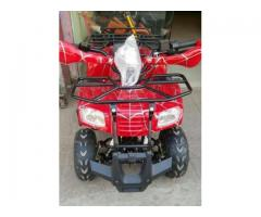 ATV Quad Bike Home Delivery Available Cheap Rate For Sale - Lahore