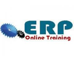 ERP Online Training for Students and Professionals - Lahore