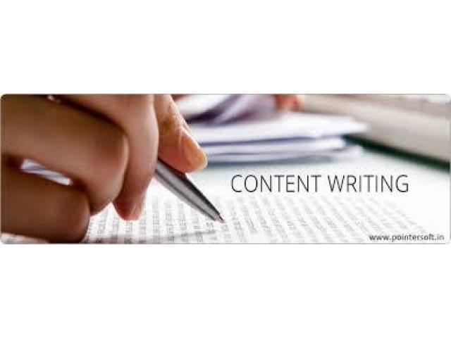 Online content writer