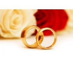 Syed Shia Girl Needed for Arranged Marriage _Lahore