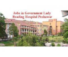 Walk In Interview As Dean In Lady Reading Hospital Peshawar