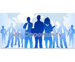 Male and Female Staff Required For Our Company In Rawalpindi
