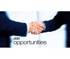 Staff Male and Female Required For Export and Import Agency Karachi