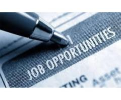 Hardworking And Honest Staff Required For Organization Islamabad