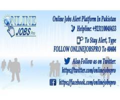 Online Jobs Pro