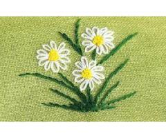 Female Staff Required For Embroidery Work In Industry Lahore