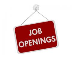 Assistant And P.A Required For Our Office Located In Karachi