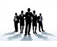 Expert Sales Team Required For Our Tissue Company In Lahore