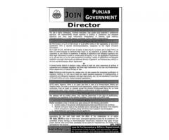 Walk in Interview As Director In Punjab Government Lahore