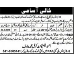 Sanitary Worker Job Available In PAF Pakistan Air Force Shorkot Cantt